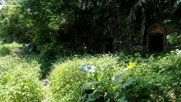 Dingshige Fort Overrun with Weeds